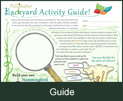 Backyard Activity Guide