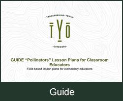 Pollinators Lesson Plans