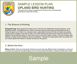 Lesson plan bird hunting