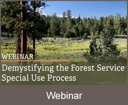 Demistifying theForest Service